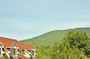 Mountain View Resort